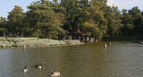 Image Découverte des oiseaux au Bois de Vincennes