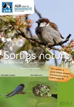 Image Parc Montsouris - Sortie ornithologique