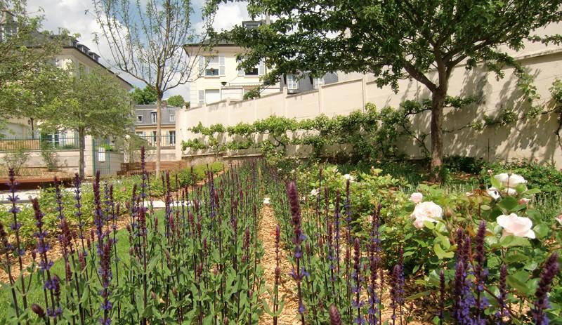 Image La Cour des Senteurs et le Jardin