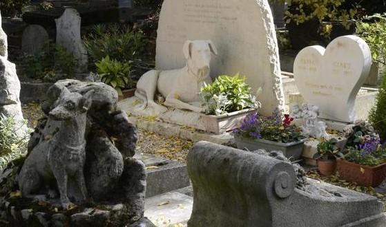 Image Cimetière des chiens, Asnières-sur-seine