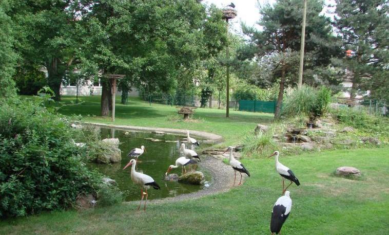 Image Parc des Cigognes - Cernay
