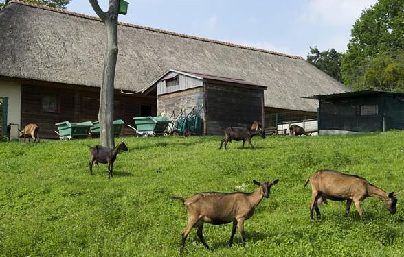 Image La ferme du Mont Valérien