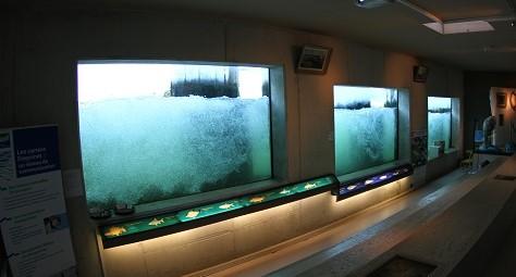 Image Espaces visiteurs de la passe à poissons