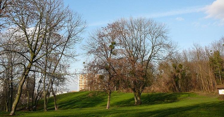 Image Parc des Beaumonts à Montreuil