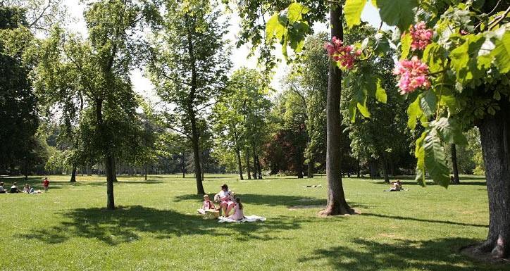 Image Parc départemental de la Roseraie