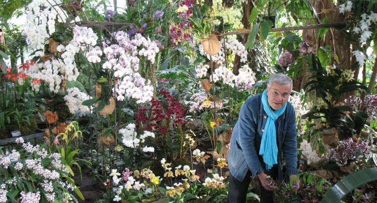 Image Orchidées Vacherot et Lecoufle