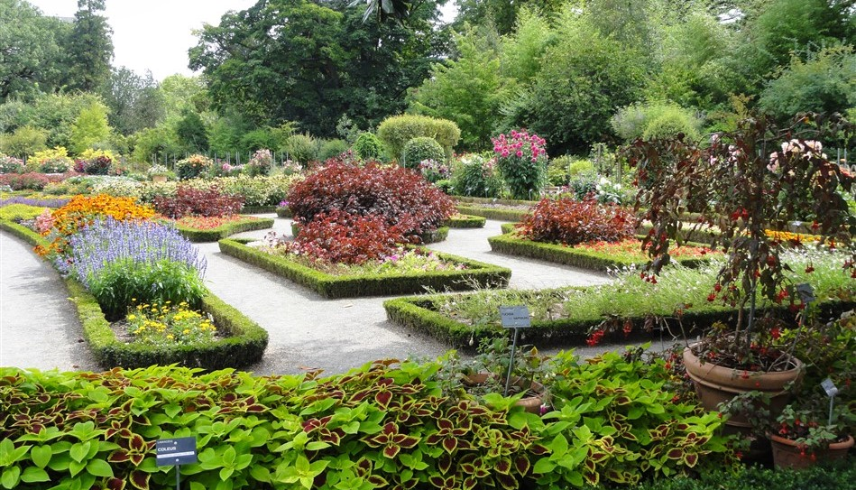 Image Jardin botanique de Lyon
