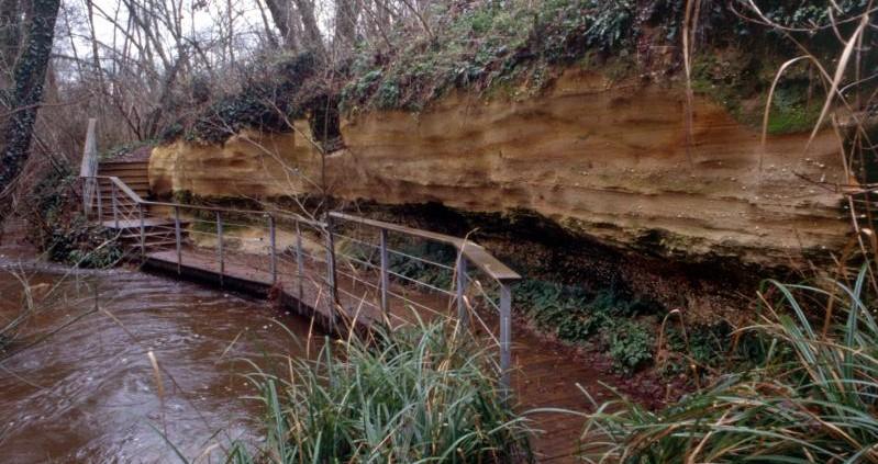 Image Réserve naturelle géologique