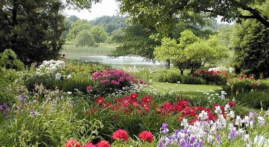 Image Jardin botanique de Melles