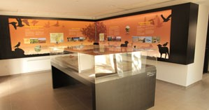 Image Ecomusée de la Crau - Maison de la Crau