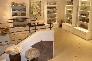 Image Musée des fossiles et minéraux
