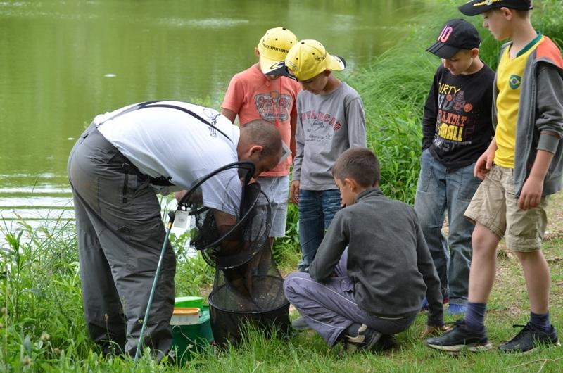 Image Ateliers pêche nature et journées pêche