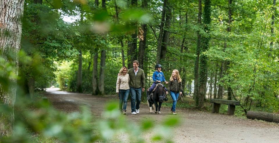 Image Center Parc - Les Bois Francs