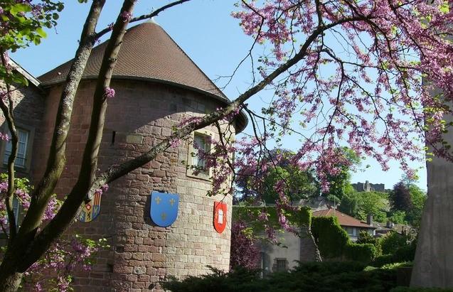 Image Musée du Chapitre