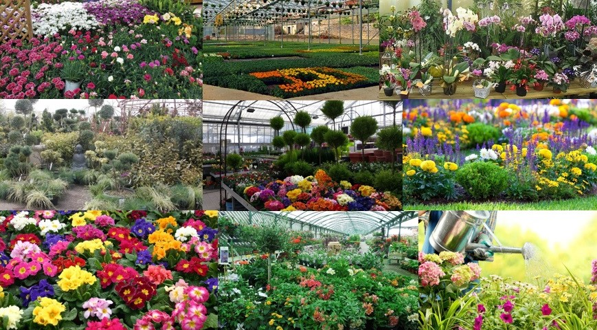 Duchesne Jardins